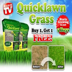 As Seen At TV Presents: QuickLawn - $19.95 and $6.95 S&H<br>Get a 2nd bag FREE, just pay additional $6.95 S&H. - Quicklawn grass seed not only grows quickly but multiplies rapidly to fill in bare spots, choke out weeds, and give you an evergreen carpet of grass all year long.. Available here on http://www.AsSeenAtTV.com!